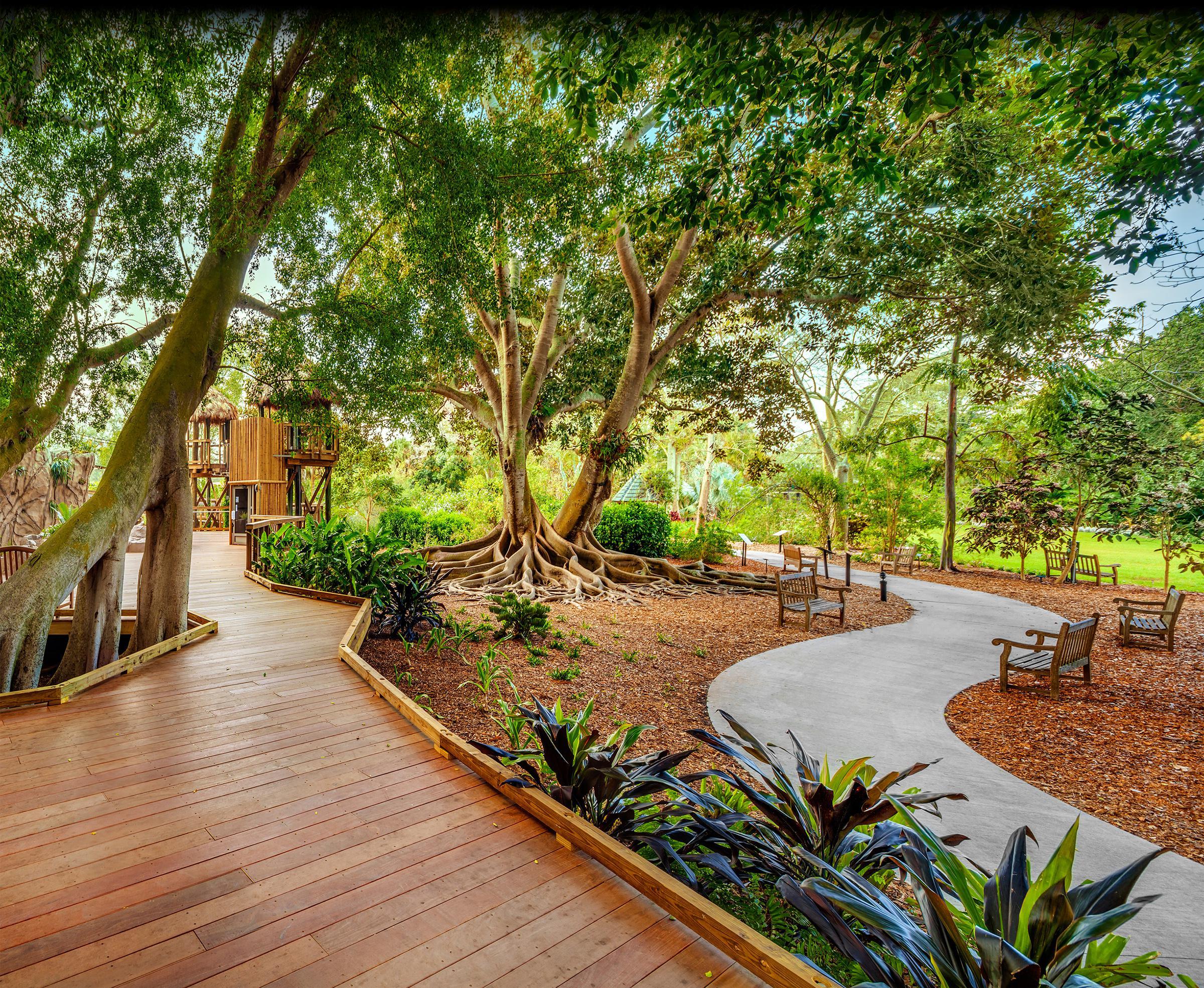 Ann Goldstein Children S Rainforest At Marie Selby Botanical Gardens Tandem Construction